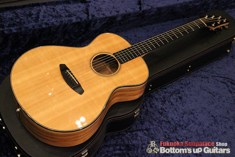 Breedlove_Oregon_C20_SMYE_Top.jpg