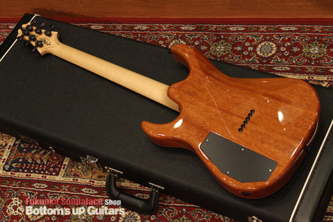 DTM_Exotic_Wood_Collection_Lacewood_Backmain.jpg