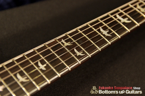 PRS_Custom24_Artist_Package_30th_BZF_Azul_Inlay.jpg