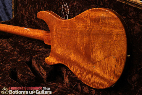 PS#7667_McCartySH_DoubleHole_ViolinAmber_bodyback3.jpg