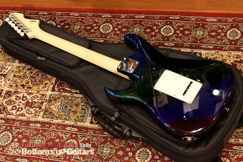 Ts_Guitars_DSTC22R_Flare_Flourite_Backmain.jpg